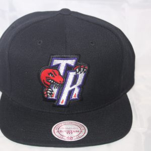 Toronto Raptors NBA Team Solid Mitchell and Ness Snapback HWC cap